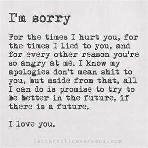 I'm sorry For the times I hurt you, for the times I lied ...
