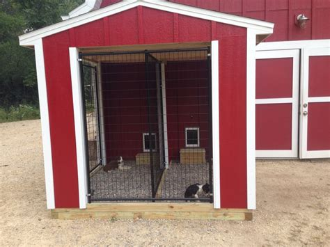 indoor outdoor kennel the farm dogs and kennels