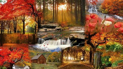 Free Animated Fall Wallpaper - screensavers wallpaper for fall 46 images