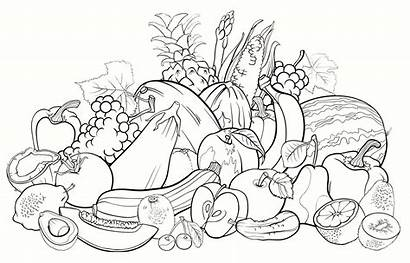 Fruits Coloring Vegetables Pages Fruit Vector Vegetable