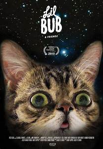 Lil Bub, Grumpy Cat And Keyboard Cat To Star In Vice Film ...