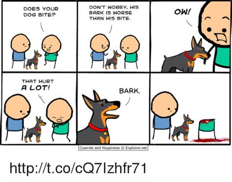 Dog Bite Meme - 25 best memes about does your dog bite does your dog bite memes