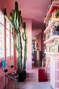 Outstanding, 75, Beautiful, Indoor, Plants, As, Your, Homes
