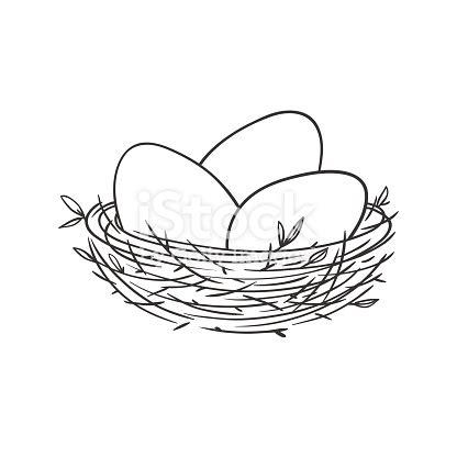nest  eggs isolated  white stock vector art