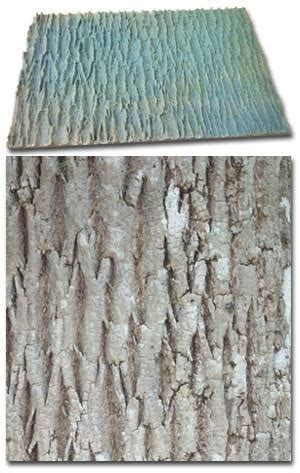 expressions  concrete stamp tree bark texture