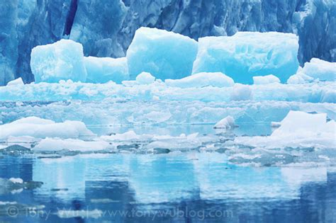 ice sculpture  south sawyer glacier alaska tony wu
