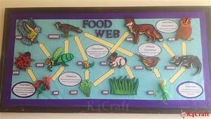 Classroom Bulletin Board Decorations, Displays, & Border