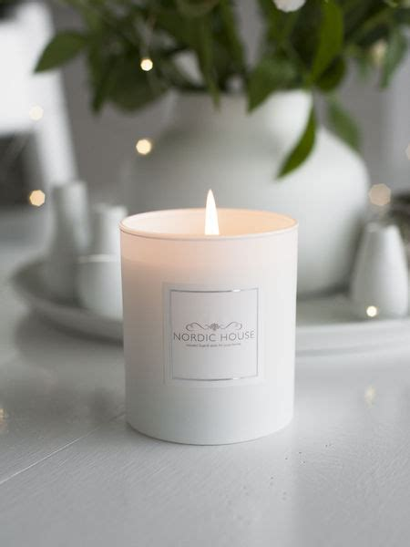 grapefruit signature candle scented candle spa candles