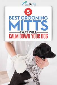 best dog grooming mitts