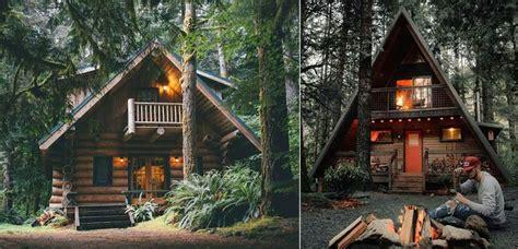 cabanas de madera  lugar  el descanso en la naturaleza