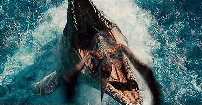 Jurassic Mosasaurus Dinosaur Water Reptile Marine Feeding