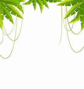 Vine clipart jungle leaves background - Pencil and in ...
