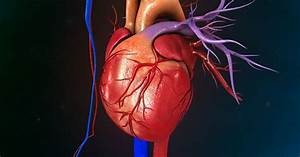 Right Ventricular Hypertrophy  Causes  Symptoms  And