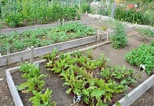 Gemüsegarten Anlegen Beispiele : einen gem segarten planen und anlegen heimhelden ~ Watch28wear.com Haus und Dekorationen