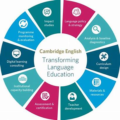 Language Education Chain Graphic Value Assessment English