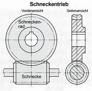 Zahnrad Modul Berechnen : schneckengetriebe tec lehrerfreund ~ Themetempest.com Abrechnung