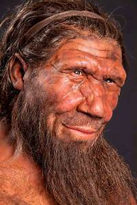 Neanderthal DNA Gave Humans Allergies, Immunity Boost ...