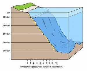 Oceanic Pressure   Read