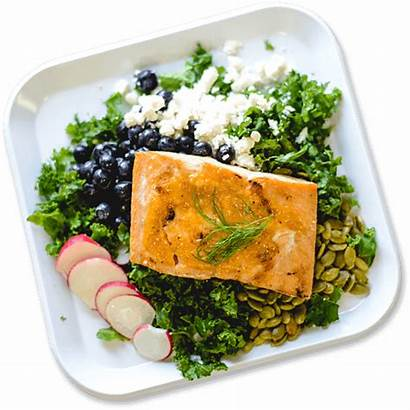 Delivery Meal Healthy Prep Tampa Company Meals