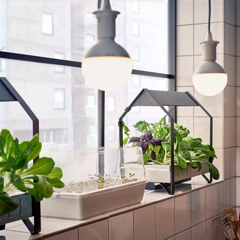 ikea into indoor gardening with hydroponic kit