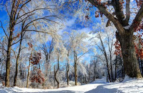 winter wonderland michigan  pictures