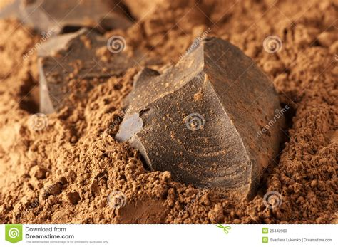 cocoa mass  cocoa powder stock photo image  dark