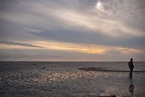 Schiermonnikoog National Park
