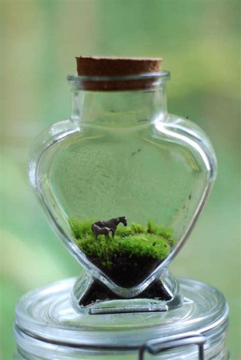 Terrarium Im Glas by Tiny Moss Terrarium Meine N 228 Chsten Projekte