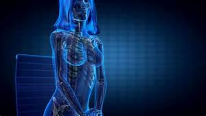 Hd Anatomical Full Body Human Model Rotating 360 Showing