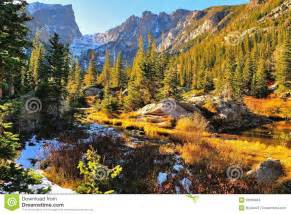Colorful Forest In Rocky Mountain National Park Stock ...