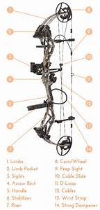 What Is Compound Bow Archery