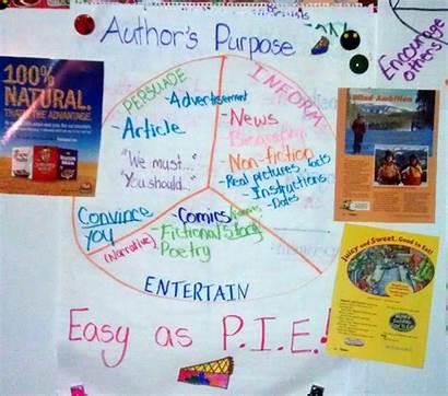 Purpose Author Vlog Chart Anchor Authors Pie
