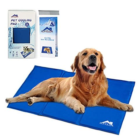Best Doormats For Dogs by Cool Dogs Rule The Best Cooling Mats Cooling
