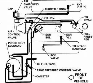 Vacuum Canister Hoses - Corvetteforum