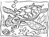 Coloring Ocean Pages Animals Printable sketch template