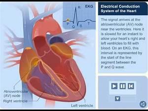Hearts Electrical System U5fc3 U81df U96fb U6d41 U50b3 U905e