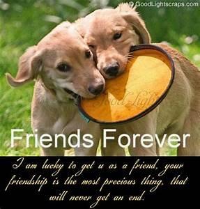Friends Forever Orkut Scraps, Comments & Graphics for Myspace
