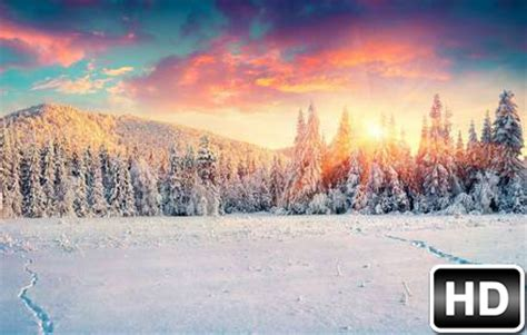 winter snow wallpapers hd  tab themes hd wallpapers
