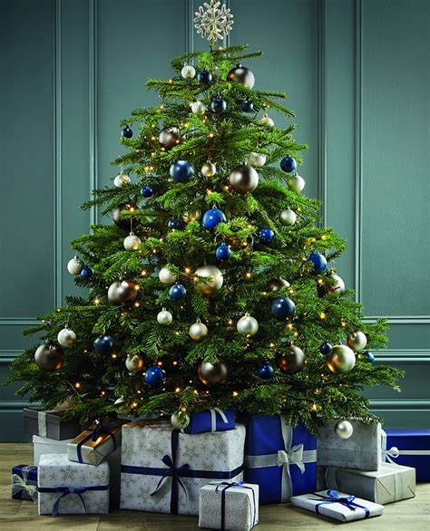 how much is a real christmas tree can you tell which trees are luxury daily mail