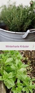 Winterharte Pflanzen Für Balkon : winterharte kr uter f r balkon und garten garten pinterest garten garten ideen und ~ Somuchworld.com Haus und Dekorationen