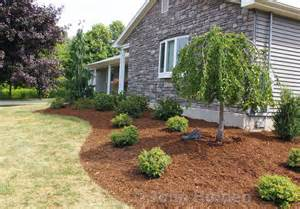 Wood Used For Raised Garden Beds by How To Re Mulch Your Garden Landscape Beds Like A Pro