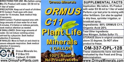 ormus recipe | Kikielpiji org