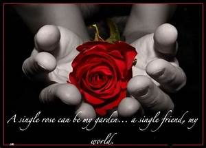 Black Rose Quotes. QuotesGram