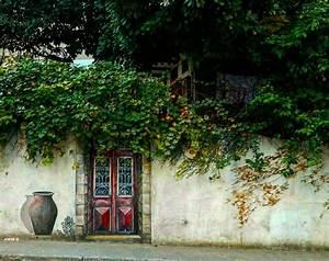 door art plants streetphotography outdoors noperson travel ...