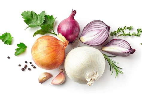 cuisiner les oignons tout sur l 39 oignon le choisir le cuisiner le conserver