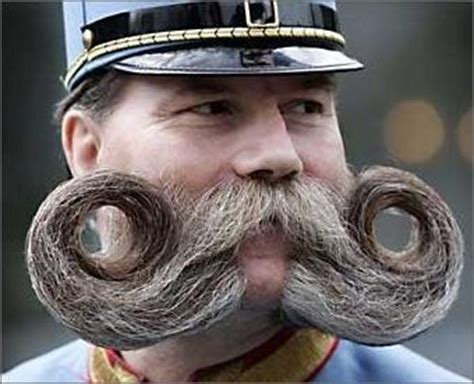 funny mustaches  funny