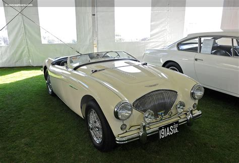 austin healey  bn image chassis number