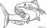 Catfish Coloring Cartoon Clip Drawings Clipart Clipartion sketch template