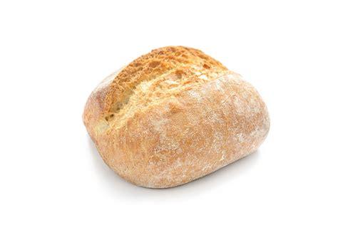 bread cats eat toast
