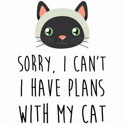 Cat Funny Plans Sorry